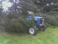 Tree Fell on the Tractor.jpg