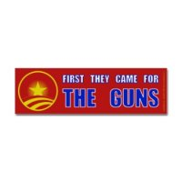 343517018v7_350x350_Front First they came for the guns.jpg