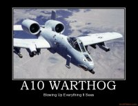 a10-warthog-demotivational-poster-1222988755.jpg
