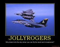 jollyrogers-demotivational-poster-1226596095.jpg