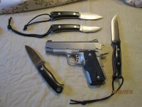 EDC knives and gun 001.JPG